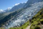 Sentier menant à la Jonction devant le glacier des Bossons et Aiguilles de Chamonix. Massif du Mont-Blanc.