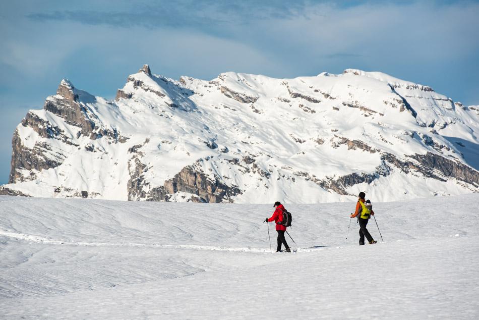 Vue sur les Fiz depuis l'alpage de la Charme
