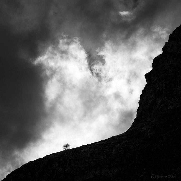 Photo d'art noir et blanc avec un arbre et des nuages