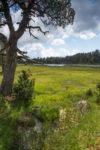 Abords du lac d'Aude