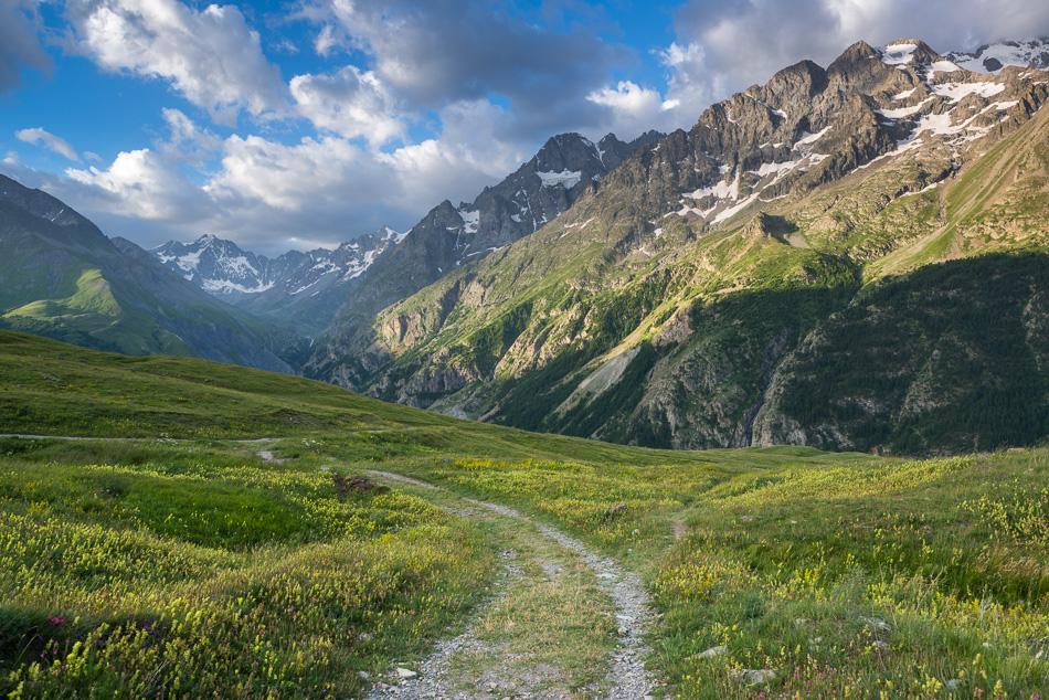 Chemin d'alpage dans les Ecrins